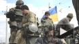 Новости Украины: добровольческий батальон Миротворец ...