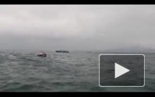 МЧС: Ту-154 разорвало от удара об воду