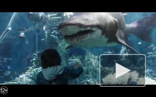 """Warner Bros. ищет актера на главную роль в сиквелах """"Аквамена"""""""