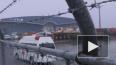 У 44 граждан США с лайнера Diamond Princess обнаружили ...