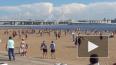 Петербургские пляжи могут обрести статус объектов ...
