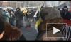 Закончился митинг оппозиции в Петербурге