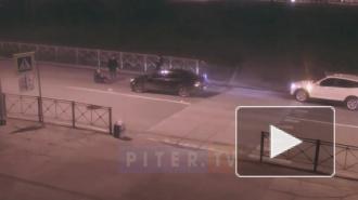 Видео: на Петергофском шоссе сбили женщину с собакой