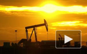 """Лавров оценил планы США """"защищать нефтяные месторождения"""" в Сирии"""