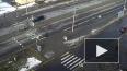 Видео: На Гатчинском шоссе внедорожник сбил собаку
