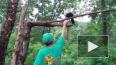 В Приморском сафари-парке ворона разговаривает на ...