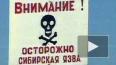 В Саратовской области зарегистрировано три случая ...