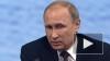 Путин назвал драку российских и английских фанатов ...