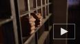 В Госдуме нашли альтернативу смертной казни