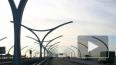 УФАС заведет на ЗСД дело из-за подорожания проезда
