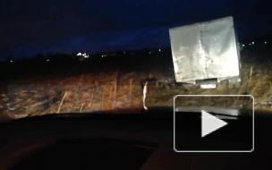 Видео: в Ленобласти поймали организаторов несанкционированной свалки