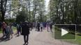 Петербург стал лидером для путешествий с детьми на ...