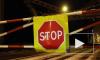 Пьяная автомобилистка с ребенком покусала полицию, шокировав интернет