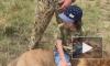 Дети Киркорова устроили фотосессию со львами в Крыму