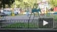 В Калининграде педофила-эксгибициониста посадили на семь...