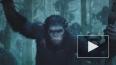 """""""Планета обезьян: Революция"""" удержится в топ-5, считают ..."""