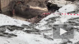 На канале Грибоедова 48 домов пострадало от прорыва ...