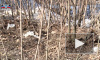 В Сети опубликовали видео с места взрывов в Донецке