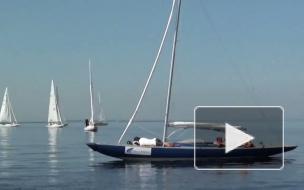 В Петербурге стартовал чемпионат России по парусному спорту среди яхт