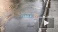 В Выборгском районе продолжаются потопы: на проспекте ...
