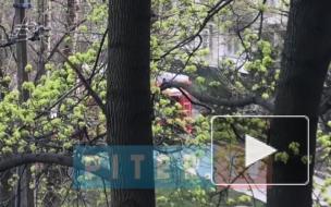 После пожара в квартире на Белы Куна нашли обгоревшее тело