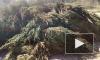 Очевидцы сняли на видео больше сотни выброшенных ёлок рядом с Приморской
