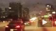Жуткое видео из США: стая черных птиц атаковала автомоби...