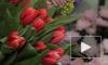 ВЦИОМ выяснил пожелания женщин к подаркам на 8 Марта