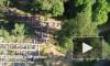 Кладбища Ленинградской области теперь снимают квадрокоптеры