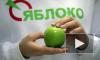 «Яблоко», заняв на городских выборах третье место, возвращается в ЗакС Петербурга