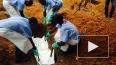 В Сьерра-Леоне сотрудник Всемирной организации здравоохр...