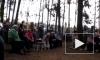 Лагерь в Цаговском лесу снесли