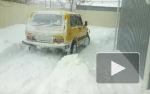 Нива в снегу