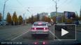 Видео из Смоленска: Из машины на ходу выбросили котенка