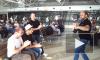 Грузины, поющие в Борисполе, взорвали интернет