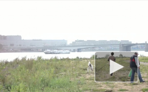 ЧП или поломка? У моста Александра Невского стоит теплоход