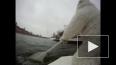 Белый арктический медведь проплыл на льдине по Москве-ре...