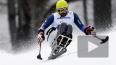 Новости Паралимпиады 2014, медальный зачет онлайн ...