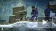 Видео: в Приморский океанариум привезли восемь пингвинов ...