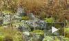 Пропавшая туристка не говорит, что произошло с ней на перевале Дятлова