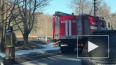Видео: в ДТП на Приморском шоссе водитель сбил столб