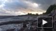 Блогер Варламов назвал парк 300-летия Петербурга полем б...