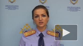Упавший с трапа в Пулково младенец скончался в больнице