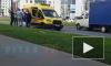 """Видео: на Муринской дороге водитель """"Газели"""" сбил мальчика"""