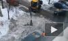 В центре Петербурга вместе со снегом убрали заборы и кусты
