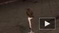 Видео: В Москве сова лихо управляет сигвеем