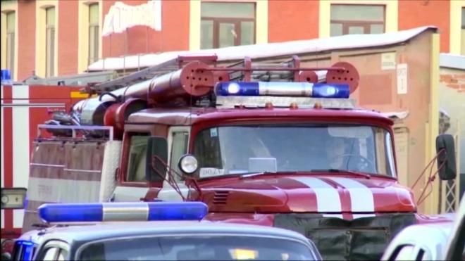 Ночью в Петербурге горело кафе в Александровском парке