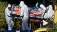 Первый в Европе случай заражения вирусом Эбола зафиксиро ...