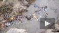 Активисты: в Орловский карьер сливают коричневую жижу с ...