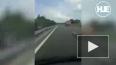 Венгрия: Водитель автобуса во время движения вел онлайн ...